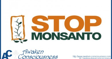 Monsanto Put on Trial