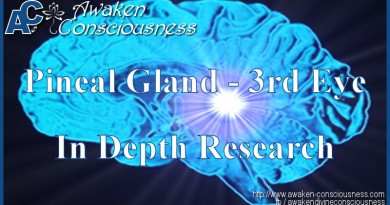 Pineal Gland and your Third Eye - In Depth Research