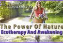 The Power of Nature – Ecotherapy and Awakening