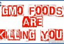GMO's are killing you – your children – and generations to come