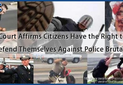 Court Affirms Citizens Have the Right to Defend Themselves Against Police Brutality